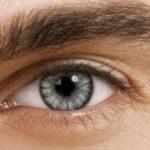 Sugar grey lenses