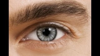 Sugar Gray Blends Contact Lenses  Good Quality Colored Contact