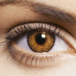 Pure Honey Contact Lenses