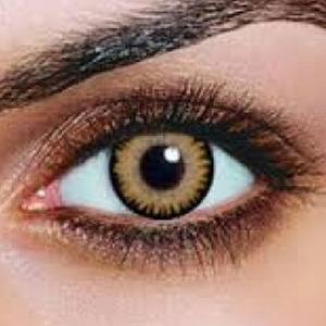 fortnightly contact lenses instructions