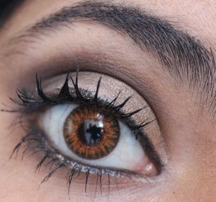 brown coloured lenses blends contacts freshtone colored contact